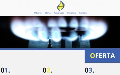 Realizacja strony internetowej, logotypu oraz fanpage